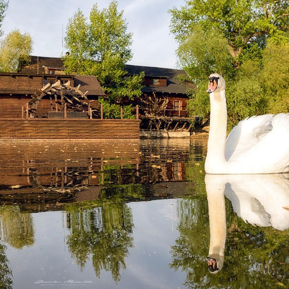 Watermill Kolárovo, Slovakia