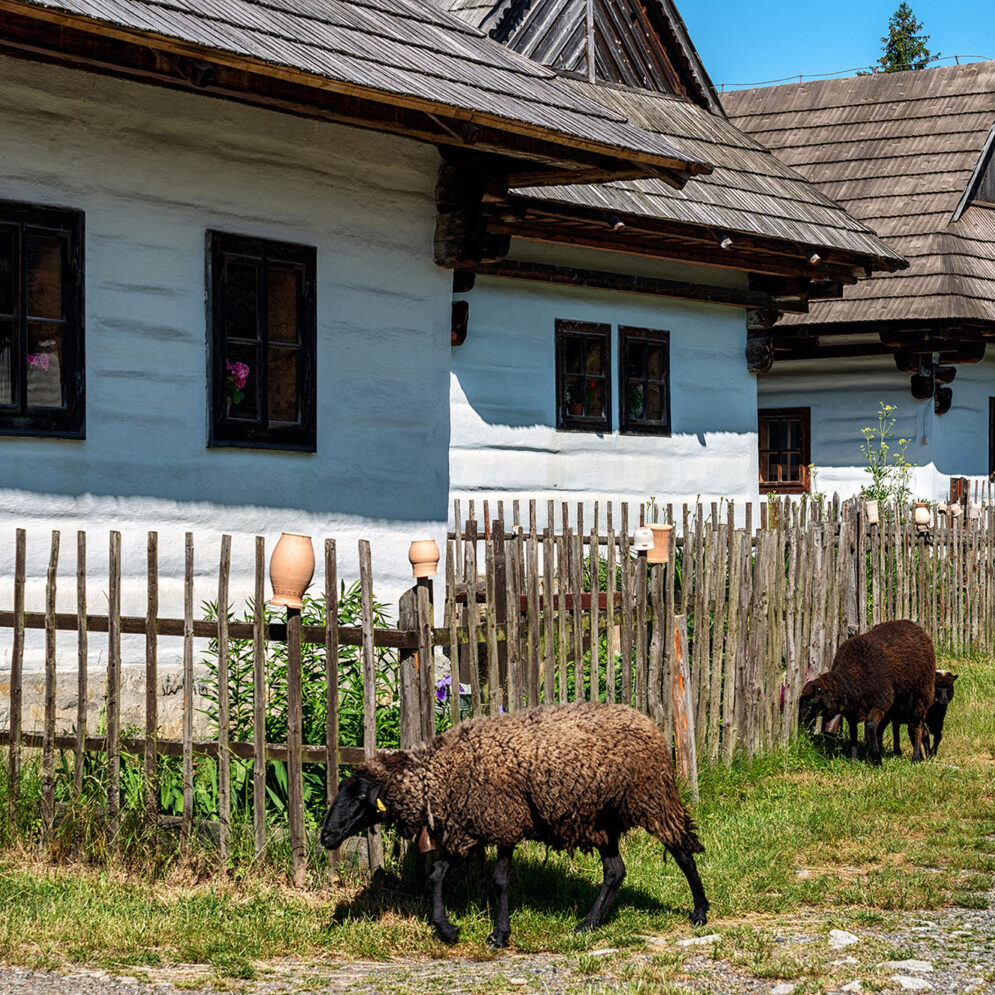Open air museum of Liptov village, Pribylina