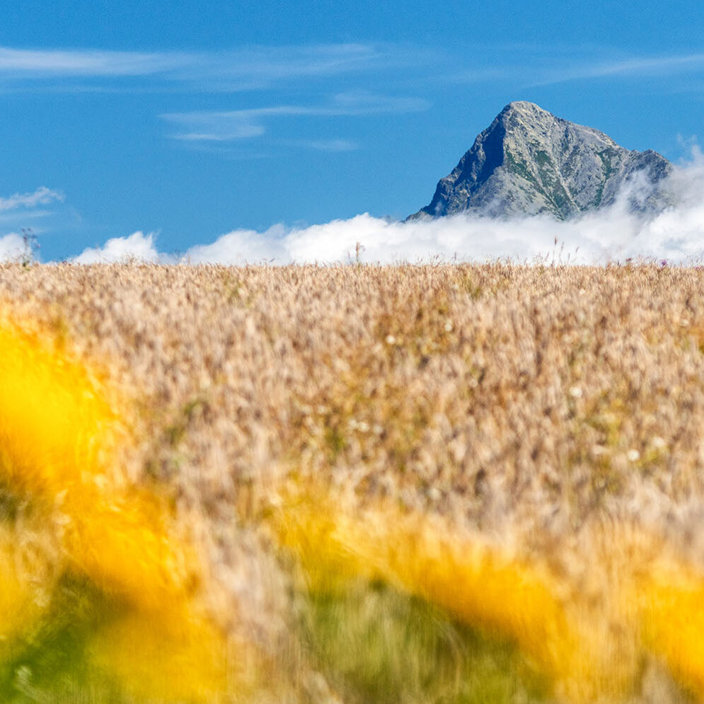 Peak Kriváň, High Tatras